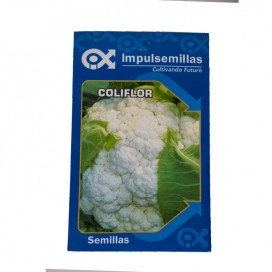 Coliflor snowball sbe 7 grs
